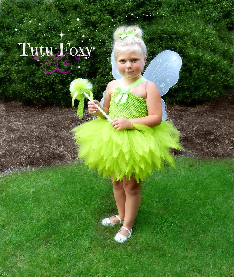 Tinkerbell costume Tinker bell costume Fairy Tutu Dress image 1