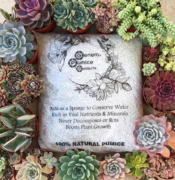 13lb Bag Garden Pumice Great For Succulent Gardening Etsy