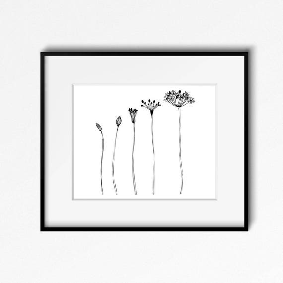 Modern Flower Wall Decor Art Prints Black