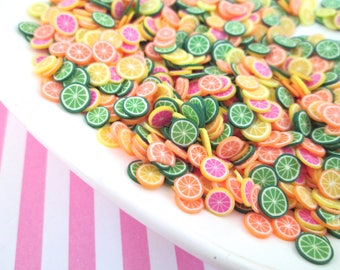 Polymer Clay Citrus Fruit Slices, Nail Art Slices, Faux Fruit, Miniature Fruit, E205