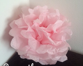 Pack de 2 pompones en papel de seda rosa pálido
