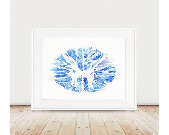 Rückenmark Kreuz Abschnitt Poster Science Art Nervensystem
