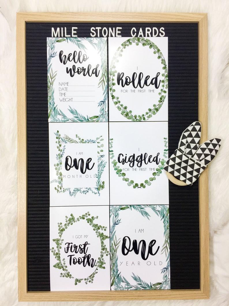 24 Eucalyptus Baby Mile Stone Cards | Cheap Printable Mile Stone Cards |  Baby Progress Photos | Instagram Baby | Green Eucalyptus Print