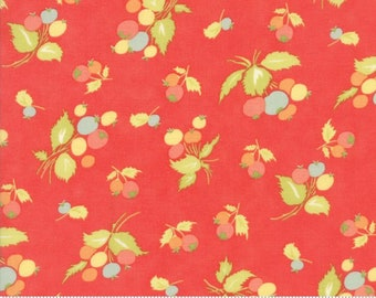 Coney Island Coral Floral 20286-12 from Moda by the yard
