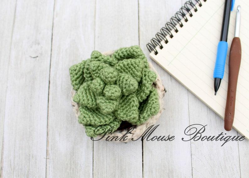 Crochet Plant CROCHET PATTERN: Succulent Plant Crochet Succulent ENGLISH Only