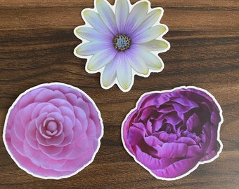 Three Pack Flower Sticker Bundle / Peony / African Daisy / Camellia / Photography / Laptop Sticker / Vinyl Sticker