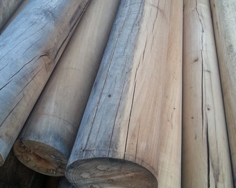 Rustic Reclaimed Log Cores - Craft Projects, Bed Rails, Table legs, Log Bed, Rustic Furniture, Bed Post, Bench - Custom Lengths Available