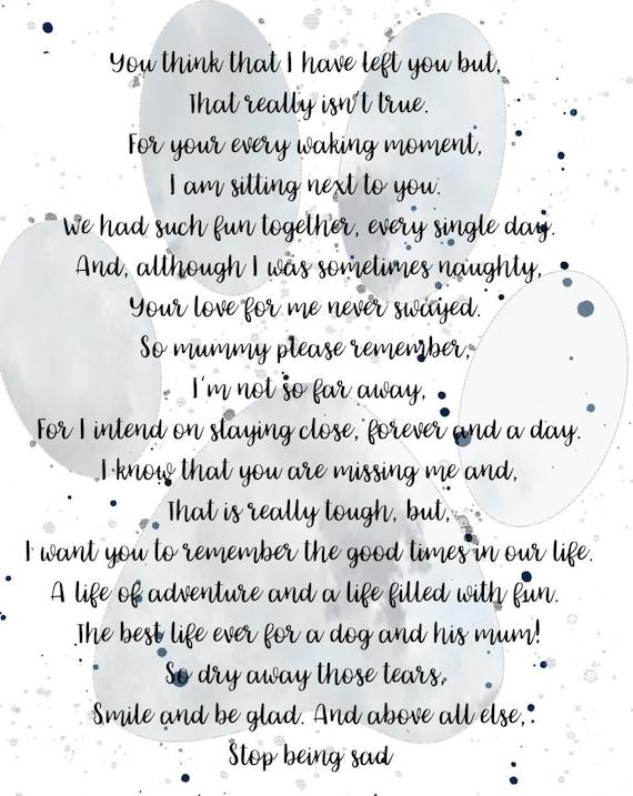 Pet Verlies Gedicht Gedicht Van Mijn Hond Huisdier Remembrance Hond Verlies Gedicht Herinneren Mijn Hond Dog Lovers Gedicht Afdrukbare Hond