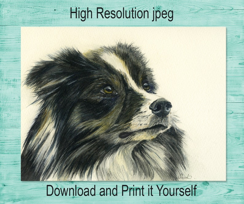 Border Collie Sheep Dog Puppy Cute Animal Painting Birthday Card
