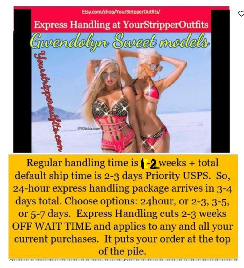 Your Stripper Outfits Express Handling Options.  Express image 0