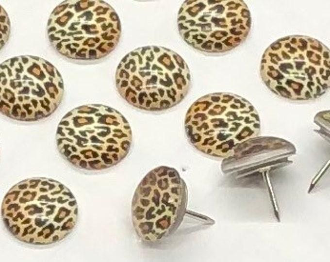 Featured listing image: Cheetah Print Thumbtacks, 25pcs - push pins, gift, leopard, animal print