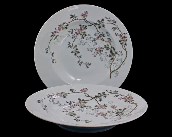 Antique Coupe Soup Bowls, B & D Limoges, Bawo and Dotter, Set of 2, Hard To Find, Floral Pattern