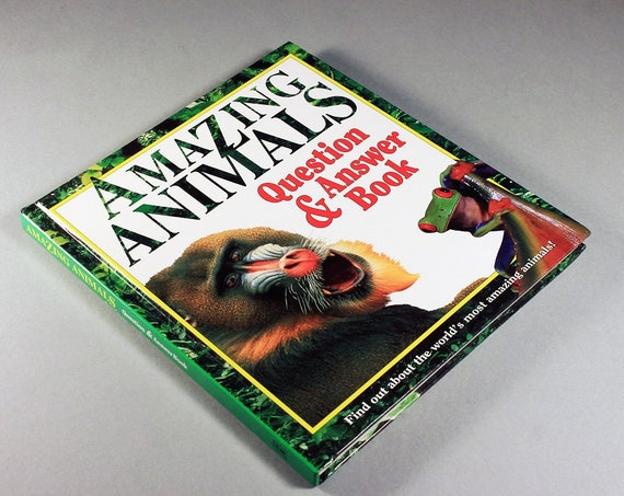 Children's Hardcover Book, Amazing Animals, Reference Book, Question and Answer, Animal Book, Illustrated