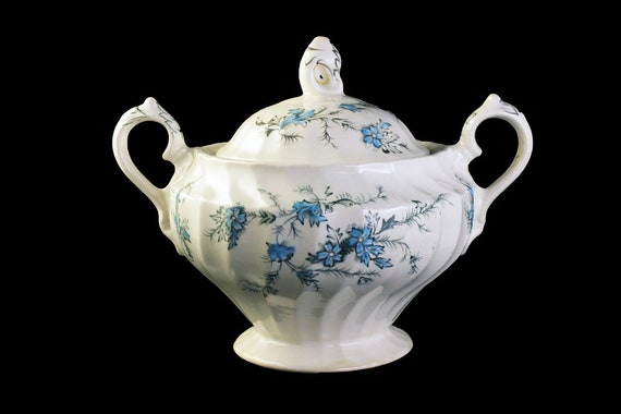 Sugar Bowl, Forget Me Not, Myott Staffordshire, Made in England, Blue Floral, Scalloped