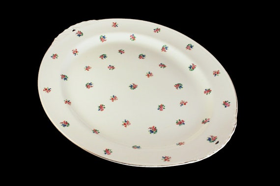Platter, Homer Laughlin, N1489, 15 Inch Platter, Eggshell Nautilus,  Floral Pattern, Fine China, Rare, Hard To Find
