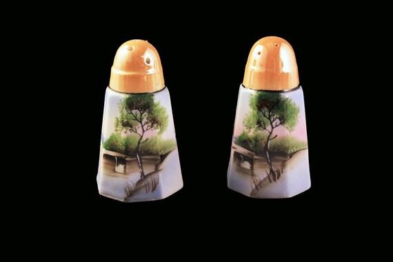 Salt and Pepper Shakers, Hand Painted, Swan Pattern, Lusterware, Made In Japan