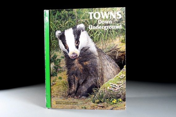 Children's Hardcover Book, Towns Down Underground, National Geographic, Young Explorers,  Reference Book, Animal Book, Illustrated
