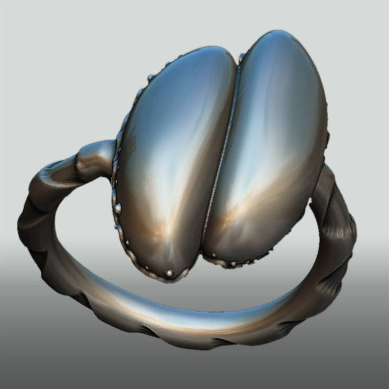 Sterlingsilver ring Coco de mer   sterlingsilver gift image 0