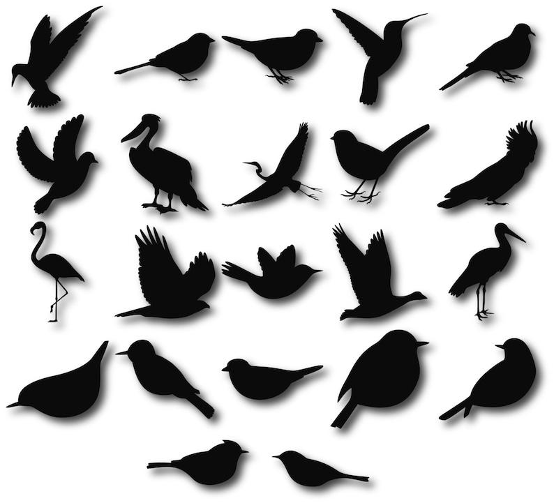 Birds Silhouettes Birds clipart Birds svg Bird Silhouette ...