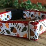 Acorns and Leaves Dog Collar