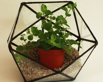 Geometric terrarium / stained glass planter / candle holder / display box / icosahedron