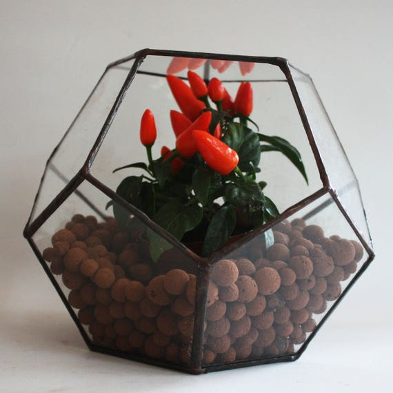 gro en geometrischen glas terrarium pflanzen etsy. Black Bedroom Furniture Sets. Home Design Ideas