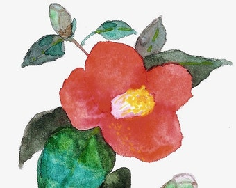 ORIGINAL little watercolour painting of Camellia japonica - botanical art. blossoming bright red flower on a branch on white background