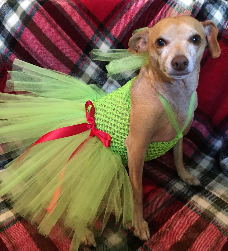 grinch costume lime green dress for dogs Christmas tutu for dogs holiday dog dress ready to ship Grinch dog costume