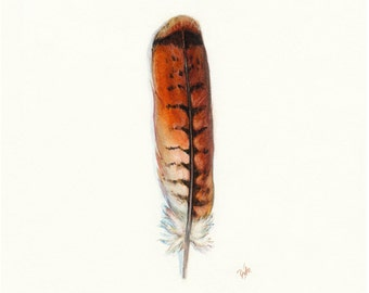 Red-tailed Hawk Print, Hawk Feather, Redtail Hawk Feather, Red Tail Hawk, Native American, Indian Art, Watercolor Feather, Smudge Feather,