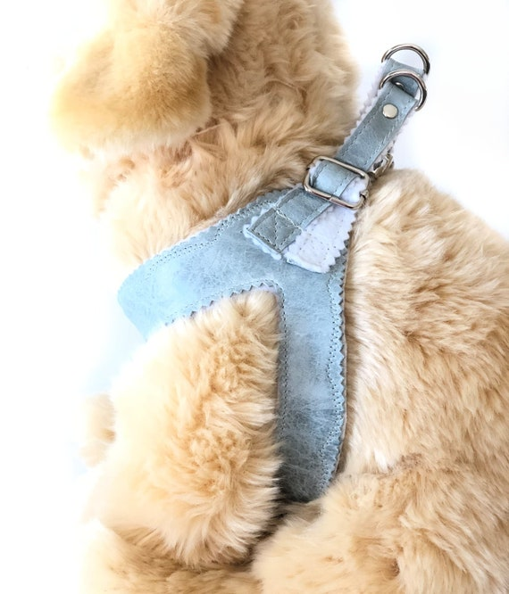 Brown Leather Small Dog Harness with Matching Leash XS Green Step In Harness Yorkie Adjustable Reflective Puppy Harness Poodle M S