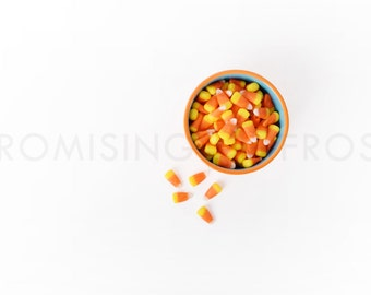 Download Free SALE Styled Stock Photography | 5 Fall Images with Candy Corn, Pumpkins, Gourds, Pinecones on White Desktop | Product Mockup | Digital Image PSD Template