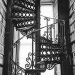 Trinity College Library, Library Photo, Iron Staircase, Ireland Art Print, Dublin Ireland Photo, Irish Decor, Book Photography, Office Decor