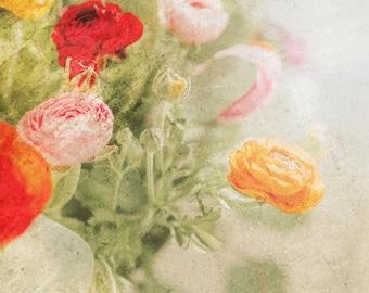 DIGITAL Ranunculus Flower Photo, Flower Prints, Vintage Flowers, Botanical, Shabby Chic, Ranunculus, Flower Art, Instant Print, Downloadable
