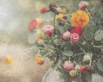 Ranunculus Flower Photo, DIGITAL Flower Prints, Vintage Flowers, Botanical, Shabby Chic, Ranunculus, Flower Art, Digital Photo, Downloadable