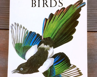 Library of Art Audubon Birds by Roger Tory Peterson 1980