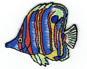 Tropical Fish - Blue/Green/Orange Stripes - Angelfish - Iron on Applique - Embroidered Patch - 696398-A