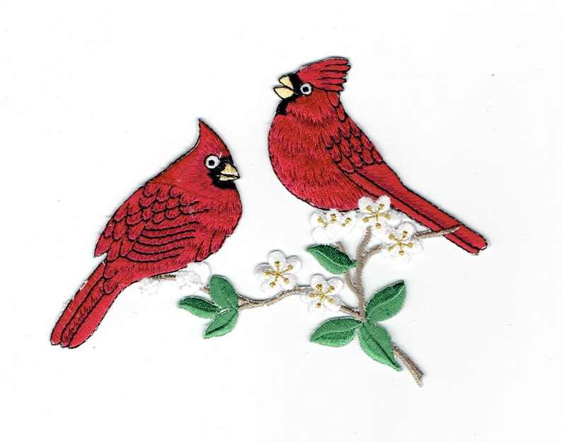 Due cardinali uccelli rossi seduto sul ramo fiore bianco etsy