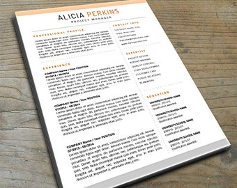 Professional Resume Template with Flair