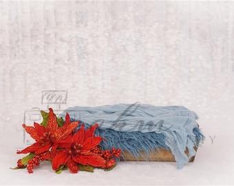 DIGITAL Newborn Backdrop Christmas Poinsettia Box. One of a kind prop!
