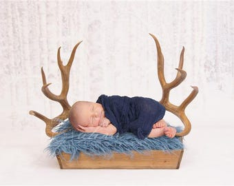 DIGITAL Newborn Backdrop Winter Antlers and Box. One of a kind prop!