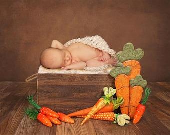 Digital Newborn Backdrop Carrot Wooden Box. One of a kind prop!