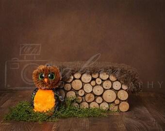Digital Newborn Backdrop Hunting Owl Wooden Box. One of a kind prop!