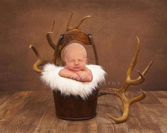 DIGITAL Newborn Backdrop Antlers and Box. One of a kind prop!