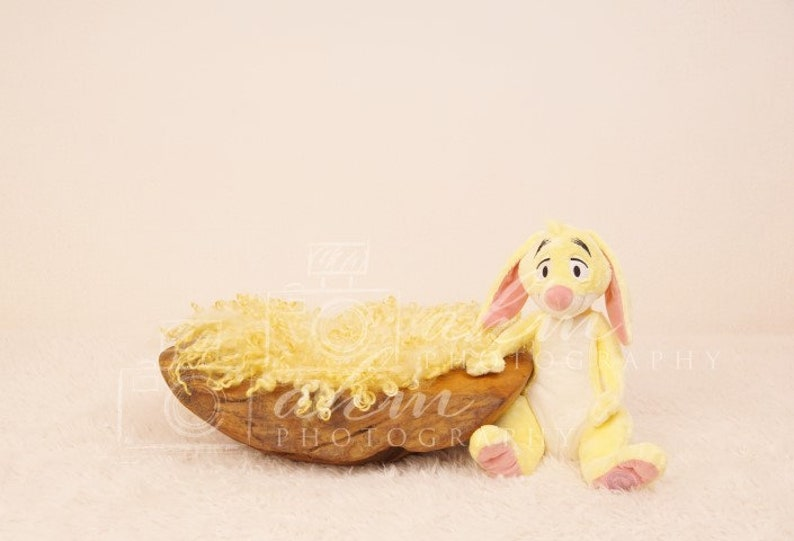 Newborn Digital Backdrop Winnie Pooh Rabbit Animal Cartoon Baby Boy Girl Composite Background Sale