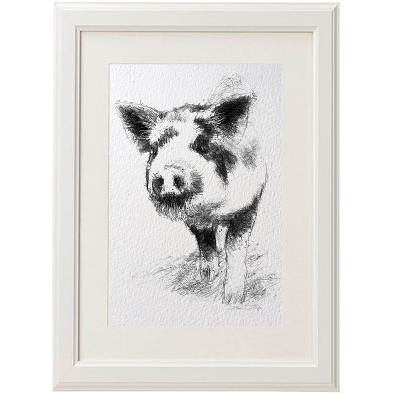 Free shipping. Spotted piglet Limited edition fine art print from original drawing