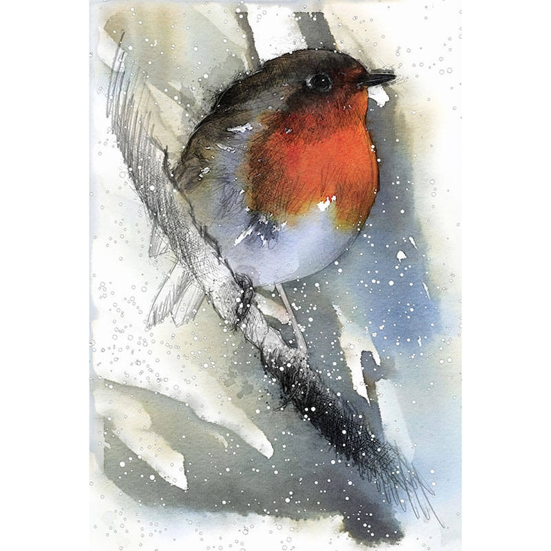Robin winter Limited edition fine art print from original drawing Free shipping.