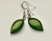 Pressed leaf earring, Nat...