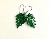 Real fern earrings, fores...