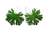 Daisy leaves earrings, green pressed leaf and resin dangle jewelry, botanical plant gift for Christmas, Anniversary for nature lovers