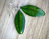 Real green leaves dangle earrings, plant jewelry for nature lovers, gift for her for Anniversary, Christmas and Birthday